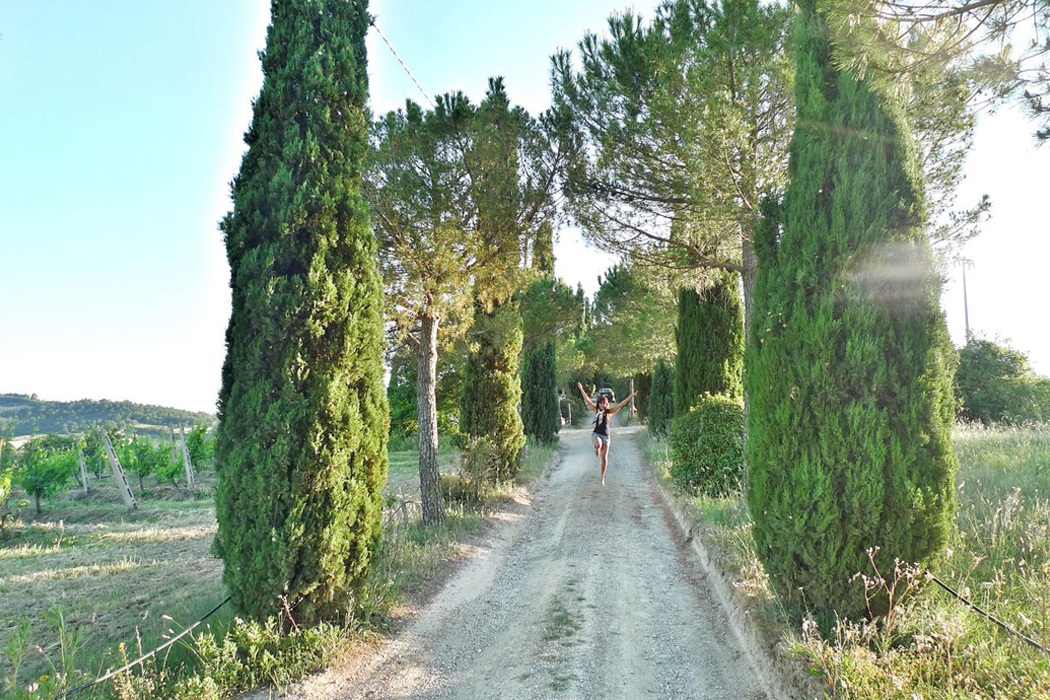AROUND HOTELITO LUPAIA, TUSCANY. We went on a hike here the night before the proposal. We loved exploring this beautiful land. These majestic cypress trees  are like a grand entrance to Never Never Land!